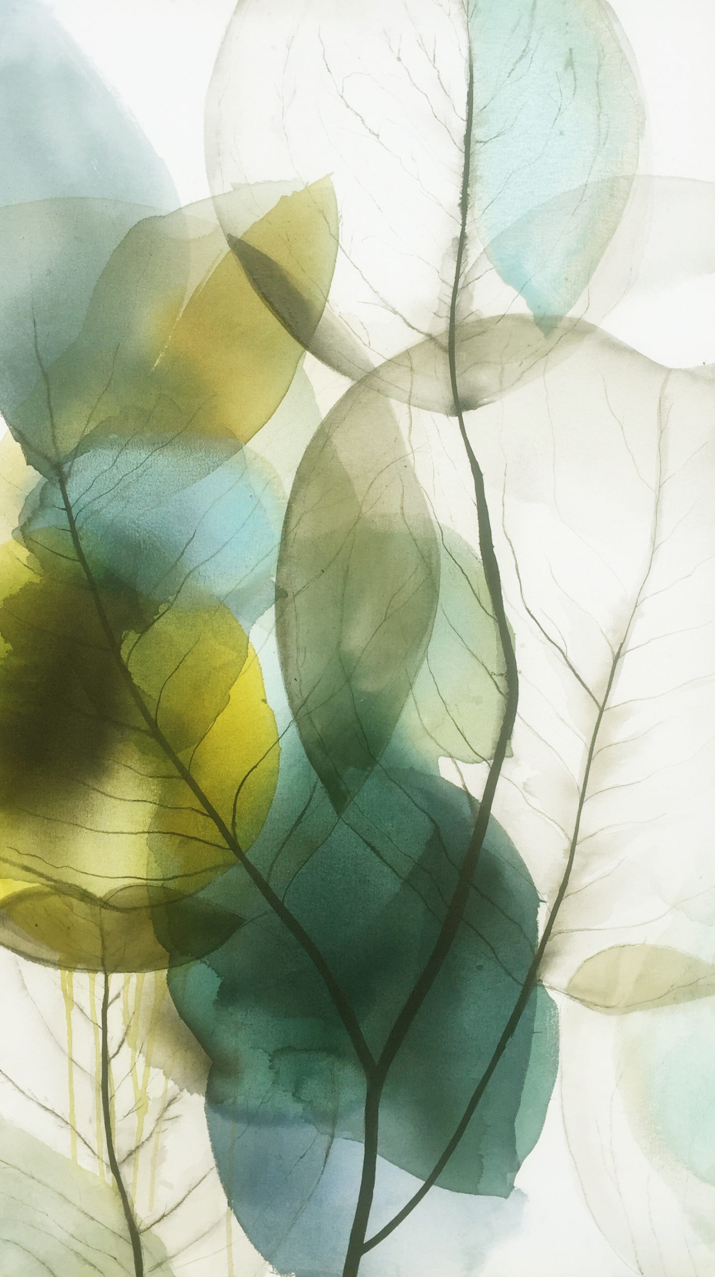 Vicky Sanders Abstract Botanical - Diaphanous